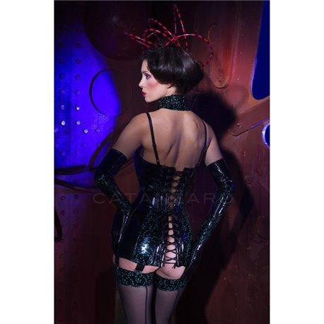 Poison Ivy Robe Jarretelles Tome 12 Patrice Catanzaro